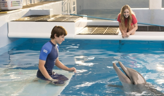 'Dolphin Tale 2' swimming in sentiment