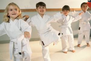 Bangor Y's Martial Arts Camp