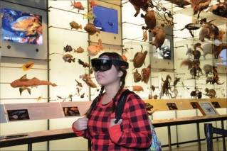 In this Dec. 13, 2016 photo provided by the American Museum of Natural History, a visitor at the museum in New York experiences 'AR Shark,' a prototype augmented reality program that overlays CT scan data on a Mako shark model in the Hall of Biodiversity. Museums working to present exciting and meaningful exhibits are increasingly relying on technology.