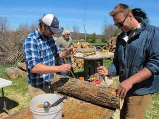 In this Friday, May 6, 2016 photo, mushroom growers Andy Bojanowski, left, and Nick Laskovski inoculate logs with shiitake spawn at Eddy Farm in Middlebury, Vt. The farm will host the sixth annual Shiitakepalooza on Saturday at which volunteers help mushroom growers inoculate logs that will eventually sprout shiitake mushrooms that can bring in $16 to $20 a pound. (AP Photo/Lisa Rathke)