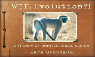 'WTF Evolution?!'