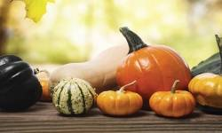 Fall in love with autumn food