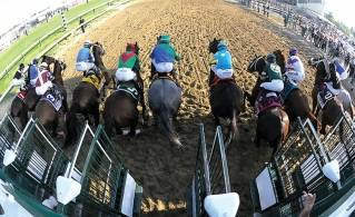 I'll Have Another wins Preakness, Triple try next