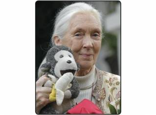 Jane Goodall, primatologist and frequent flyer