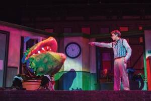 Growing pains – 'Little Shop of Horrors'