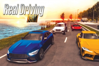 Weekly Time Waster - 'Real Driving Sim'
