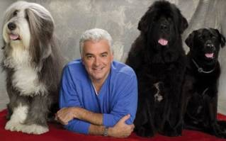 John O'Hurley's four-legged Thanksgiving tradition