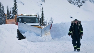 A dish best served cold – 'Cold Pursuit'