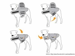 Thundershirts for dogs