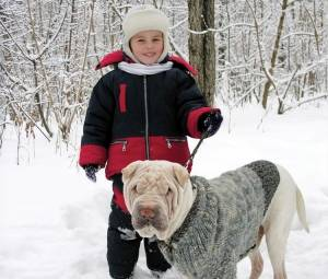 Protect your pet from extreme cold