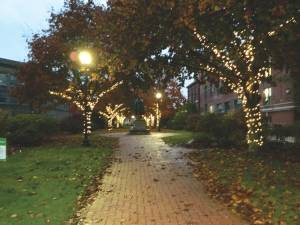 Over 20,000 winter lights are now on display in Kenduskeag Parkway, downtown Bangor and West Market Square (edge photo by Jodi Hersey)