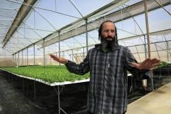 Israeli farmers observe sabbatical – with a wink