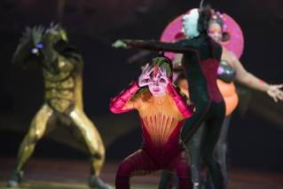 Cirque Du Soleil Ovo in Bangor on Thursday, June 2, 2016.