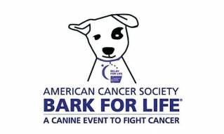 More participants needed for Greater Bangor Bark for Life event