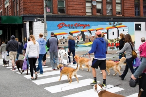 Go 'Bark to the Future' with Paws on Parade