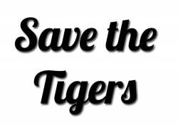 Zoo launches song to help save tigers