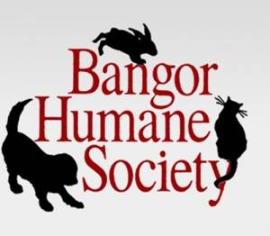 Bangor Humane Society needs your votes