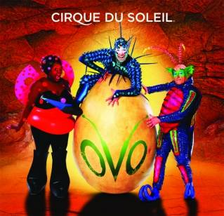 Cirque du Soleil's Ovo' begins a new life in arenas in North America
